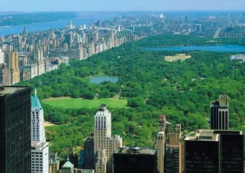 Cours de Anglais en New York Empire State Building